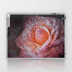 dark rose Laptop & iPad Skin
