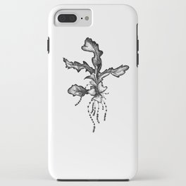 Oak Seasons 1 iPhone Case