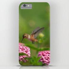 Hummingbird iPhone 6s Plus Slim Case