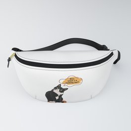 A Question from The Cat Fanny Pack