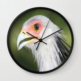 SecretaryBird Wall Clock