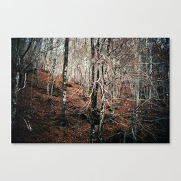 Woods calling Canvas Print