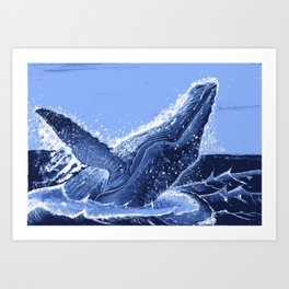 Hump Back Whale Breaching Art Print