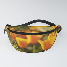 Poppies in Bloom at the California Superbloom Fanny Pack