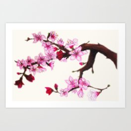 Cerezo en flor Art Print