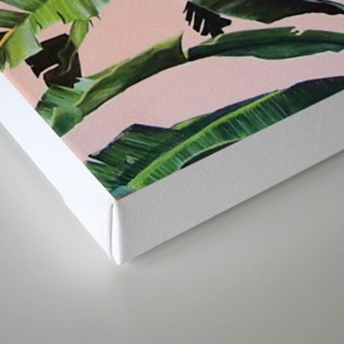 Tropical Palm leaves on pink Canvas Print