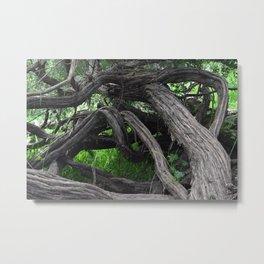 Tangled Wood Metal Print