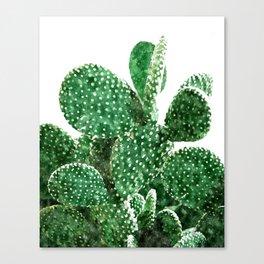 Velvet Cactus Canvas Print