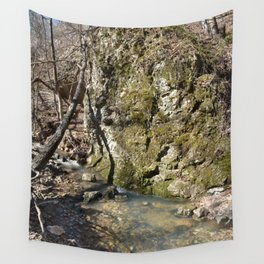 Alone in Secret Hollow with the Caves, Cascades, and Critters, No. 11 of 21 Wall Tapestry