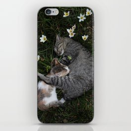 Sleep [A CAT AND A KITTEN] iPhone Skin
