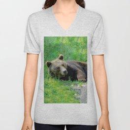 Brown bear Unisex V-Neck