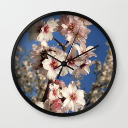 Almond blossom on the tree Wall Clock