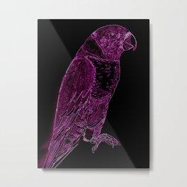 Rainbow Lorri in PInk and Black Metal Print