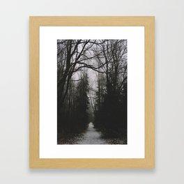 Spooky woods in Norway Framed Art Print