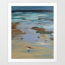 shorebirds Art Print