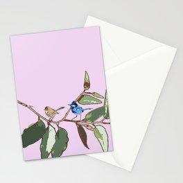Splendid Fairy-wren Malurus splendens Stationery Cards