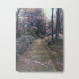 Dead Woods Metal Print