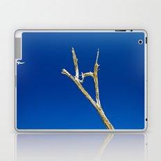 Soaring High in Blue Skies Laptop & iPad Skin