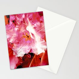 Flower Nymphs Stationery Cards