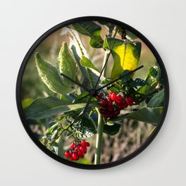 Milk weed and red berries Wall Clock