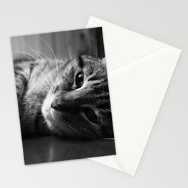 Table Top Kitty Stationery Cards