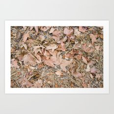 crunchy leaves  Art Print