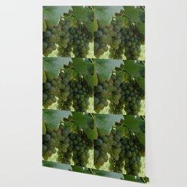 Harvest Time Wallpaper