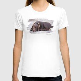 the hound dog T-shirt