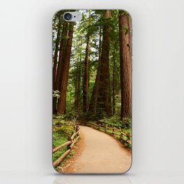 Walking Through The Muir Woods iPhone Skin