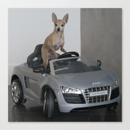 Doggy Driving Canvas Print