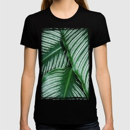 Green Tropical Leaves with White Stripes Closeup T-shirt