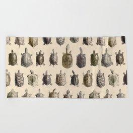 Vintage Turtles Pattern Beach Towel