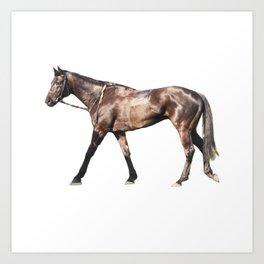 Thoroughbred Racehorse Art Print