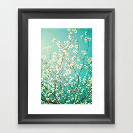 The dogwoods are blooming. Framed Art Print