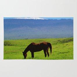 Kamuela Countryside with Mauna Kea Rug
