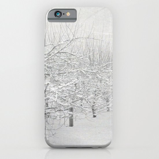 Winter Apple Orchard iPhone & iPod Case
