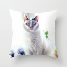 The Magic Cat Throw Pillow