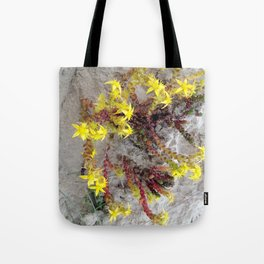 HAIRY COLLECTION (24) Tote Bag