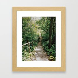 Steps to Somewhere  Framed Art Print