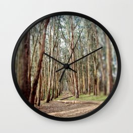 Eucalyptus Tree Forest Pathway Wall Clock