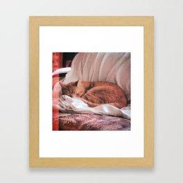 I I .  S A V A G E Framed Art Print