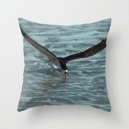 Hungry Black Skimmer Ocean Bird Throw Pillow