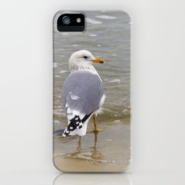 Herring Gull at the Beach by Reay of Light iPhone Case