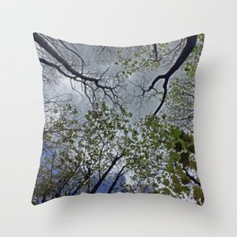 Tree canopy in the spring Throw Pillow