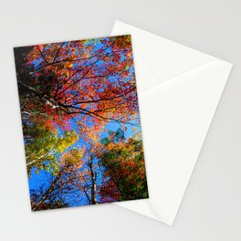 Colorful, Autumn In New Hampshire by OLena Art Stationery Cards