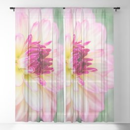 Dahlia Sheer Curtain