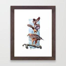 Raptors Framed Art Print