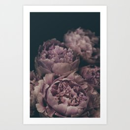 Moody Peonies | Modern Floral Photography | Nature Art Print