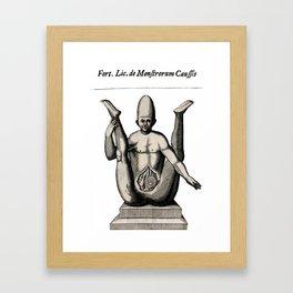 ---- Framed Art Print