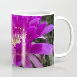 Echinopsis in Hot Pink Coffee Mug